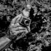 Ανιχνεύσεις και φωτογραφικά αρχεία: Αρχεία Ζωής