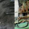 Η κεραμίστρια Αγγελική Παπαδοπούλου στην Ταϊλάνδη