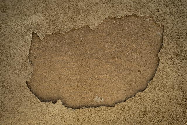 pasquav wall