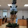 Γιώργος Κεβρεκίδης: Ένα διαφορετικό χριστουγεννιάτικο δένδρο στη Χαλκίδα