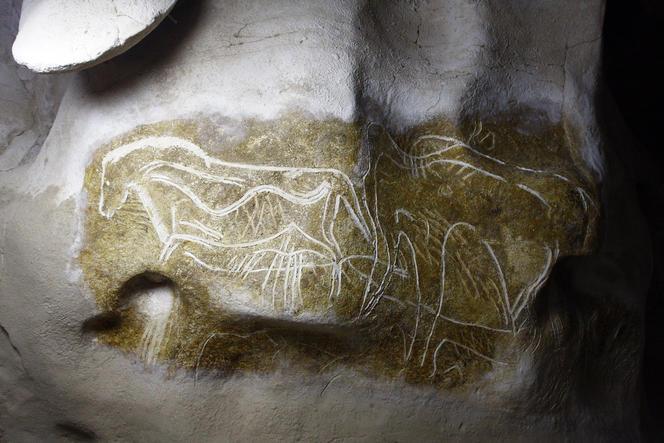 Το χαραγνένο άλογο photo by  SYCPA