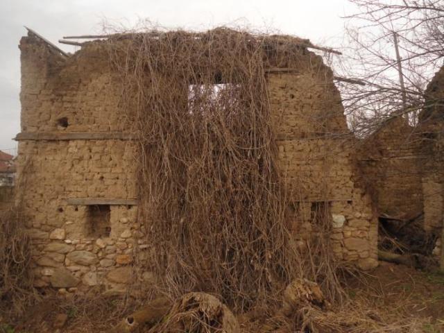 ΜΕΡΙΑΝΟΣ σπίτι 2